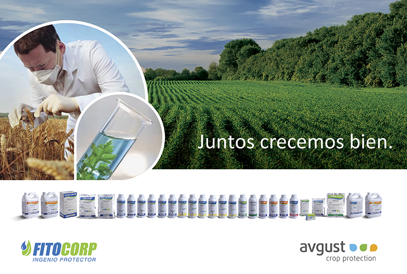 Fitocorp - Avgust